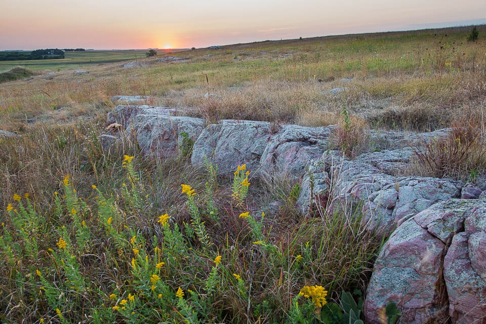 Quartzite and Goldenrod at Sunset