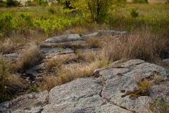 Quartzite and Fall Colors