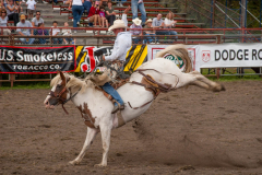 DJJD Rodeo
