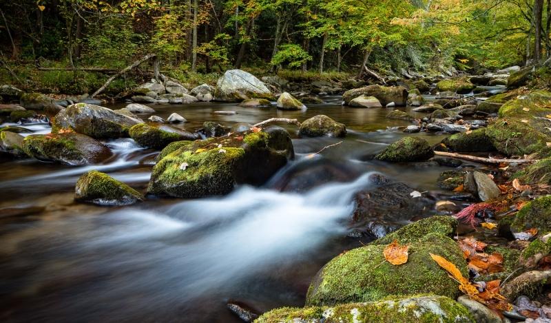 Quiet Flow on Little River