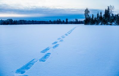 snowshoe tracks across the lake